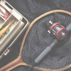 Best Destinations for Fishing Hobbyists