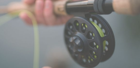 Fly Fishing Beginner's Guide to Help You Get Started