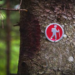 Five of the Most Common Hiking Injuries and How to Prevent Them
