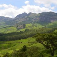Kerala's most unique and scenic Hill Stations
