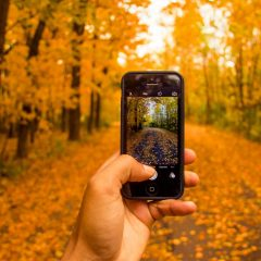 3 Accessories to Make your Phone Wilderness Ready