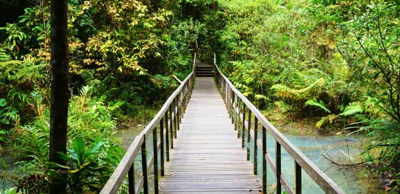 The Best Hikes in Singapore