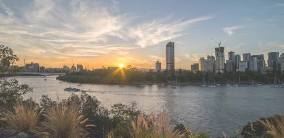 Brisbane's Top Outdoor and Wildlife Experiences