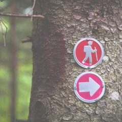 Hiking For Beginners: 7 Essential Tips
