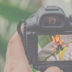 How to Pick the Best Shutter Speed