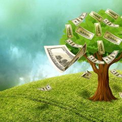 Financing Your Wilderness Vacations with Loans