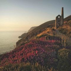 5 Must-Visit National Parks in the UK